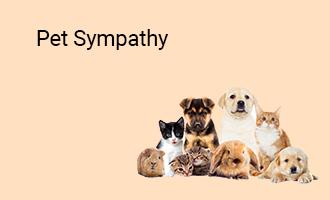 create Pet Sympathy group cards