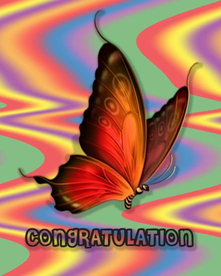 create free Butterfly Congrats group card